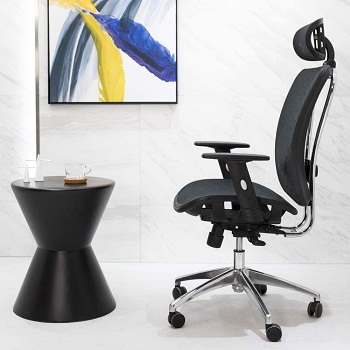 Cedric Office Chair, Breathable Mesh Computer Chair with Ergonomic Adjustable Lumbar Support