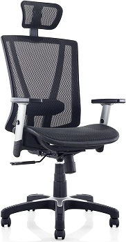 Ergomax Fully Meshed Ergonomic Height Adjustable Chair w/Armrests & Headrest