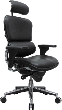 Eurotech Seating Ergohuman High Back Leather Swivel Chair