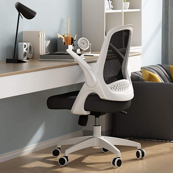 Hbada Office Task Desk Chair with Flip-up Arms and Adjustable Height