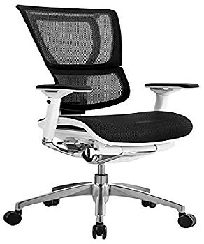 iOOEurotech Office Ergonomic Chair